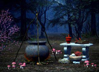 Heksenketel en ingrediënten staan klaar in het bos voor Halloween.
